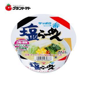 【1ケース】サッポロ一番 塩らーめんどんぶり(76g×12個入)サンヨー食品【同梱不可】【送料無料】|aizu-crops