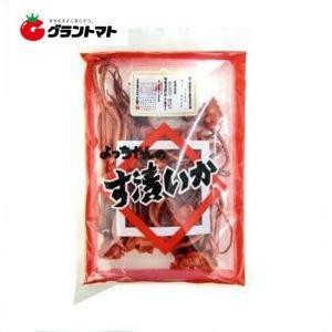 よっちゃんす漬けいか 140g(1ケース10個入り) カネタ・ツーワン【同梱不可】|aizu-crops