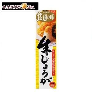 【1ケース】 生おろししようが (40g×80本入)【同梱不可】 山忠 【送料無料】|aizu-crops