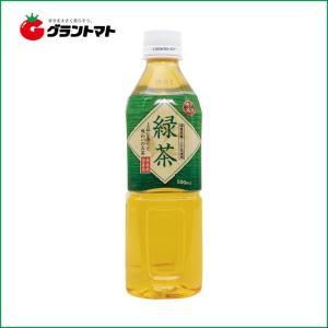 【2ケース】富永貿易 神戸茶房 緑茶 PET  (500ml×48本)【同梱不可】【送料無料】|aizu-crops