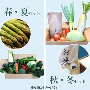 喜多方アスパラ野菜セット(小)1回(8〜10品目)2名様1週間分相当