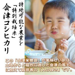 米 お米 5kg 白米 1年産 純精米 会津米物語コシヒカリ 特A一等米使用  中部地方までの本州地域送料無料|aizukome