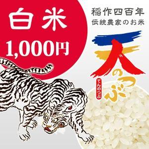 米 お試し米 1.6kg 白米 1年産 純精米 会津米 天のつぶ Aランク一等米使用   国内送料無料|aizukome