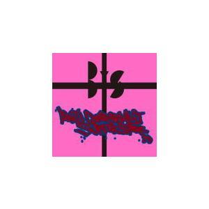通常盤 BiS(ビス) CD/ANTi CONFORMiST SUPERSTAR 20/8/19発売 オリコン加盟店|ajewelry