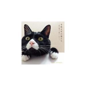 秋元順子 CD/令和元年の猫たち〜秋元順子 愛をこめて〜 19/8/7発売 オリコン加盟店 ajewelry