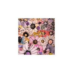 通常盤 マルーン5 2CD/ジョーディ  21/6/11発売 オリコン加盟店|ajewelry