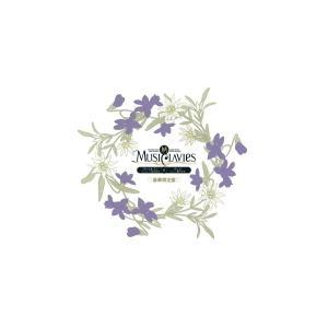 豪華限定盤(取) オリジナル小冊子/缶バッチ/ダウンロード券 MusiClavies CD/MusiClavies DUOシリーズ ヴァイオリン×チェロ  21/8/25発売 オリコン加盟店|ajewelry