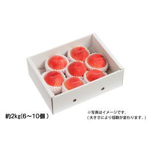 山形の白桃 ギフト用 約2kg/5〜8個(05-F)...