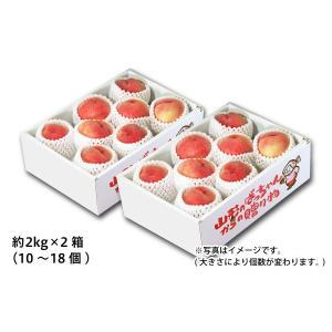山形の白桃 ご自宅用 約2kg×2箱(25-S2)...