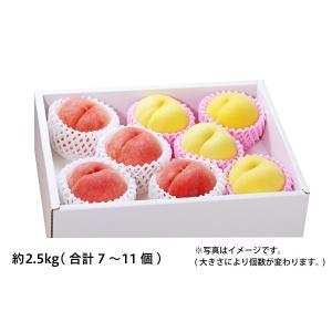 白桃・黄桃セット 約2.5kg/7〜11個(51-Z)...