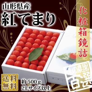 紅てまり化粧箱鏡詰約500g 2Lサイズ以上(72-O)...