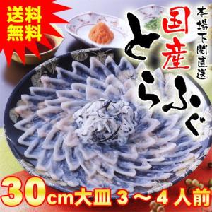 送料無料 国産とらふぐ刺身セット3〜4人前 30cmプラ皿