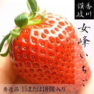 幻の女峰いちご 香川県三木町産 秀15もしくは18個入/箱 最高級苺 送料無料