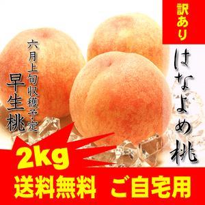 ご自宅用 訳あり 岡山産はなよめ桃2kg 9〜11玉...