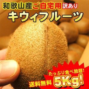 期間限定送料無料 和歌山産キウィ(キウイ)フルーツご自宅用 たっぷり5kg フルモニスムージーに最適
