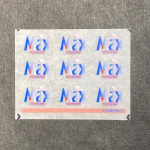 E1系新幹線MAXロゴ表記インレタ|ajisaitei