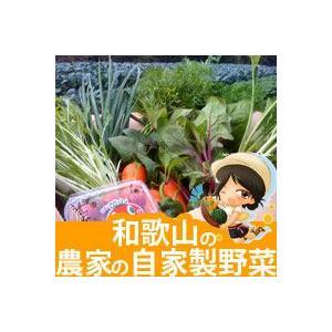 13点以上!農家の自家用野菜詰め合わせセット【野菜セット】【和歌山県産】