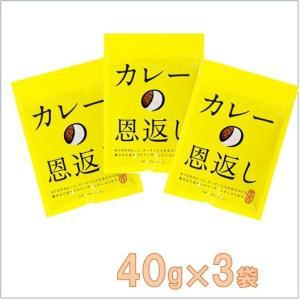 【マスコット】 カレーの恩返し   40g×3袋   「ほぼ日」オリジナルのいつものおうちのカレーが...