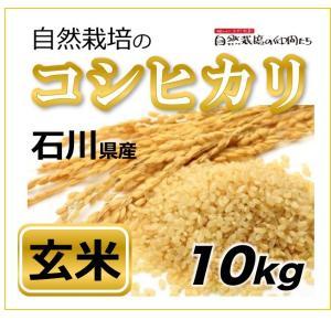 【玄米10kg】石川県のコシヒカリ 自然栽培・玄米|ak-friend