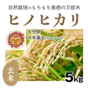 【玄米5kg】自然栽培のヒノヒカリ 大分県「火水風土」・玄米|ak-friend