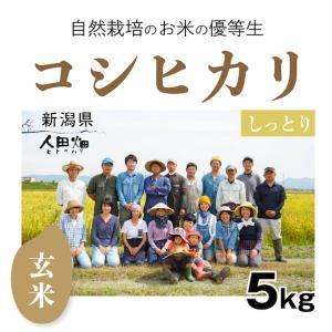 【玄米5kg】自然栽培のコシヒカリ 新潟県「自然栽培新潟研究会」|ak-friend