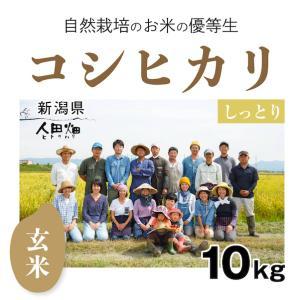 【玄米10kg】自然栽培のコシヒカリ 新潟県「自然栽培新潟研究会」|ak-friend