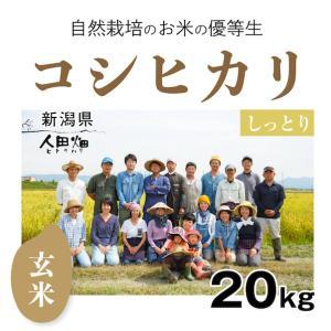 【玄米20kg】自然栽培のコシヒカリ 新潟県「自然栽培新潟研究会」|ak-friend