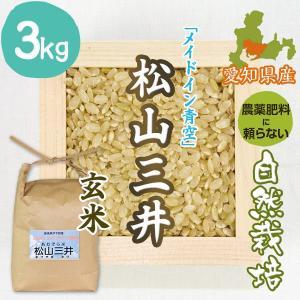 【玄米3kg】自然栽培の松山三井 愛媛県「メイドイン青空」|ak-friend