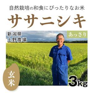 【玄米3kg】自然栽培のササニシキ 新潟県「上野農場」自然栽培の魅力が味に出て根強い人気|ak-friend
