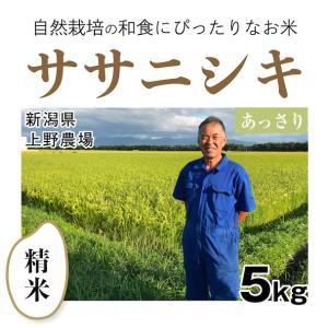 【精米5kg】自然栽培のササニシキ 新潟県「上野農場」自然栽培の魅力が味に出て根強い人気|ak-friend