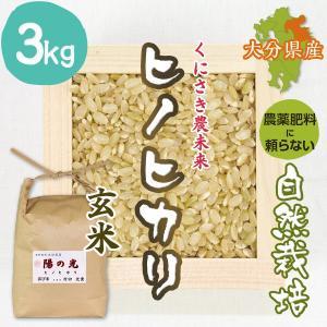 【玄米3kg】自然栽培のヒノヒカリ 大分県「くにさき農未来」・玄米|ak-friend