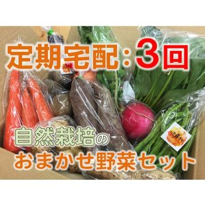 【定期宅配:3回】中身おまかせ☆自然栽培野菜セット|ak-friend