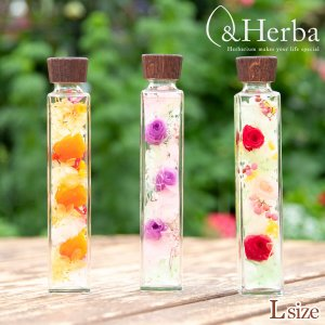 ハーバリウム ボトルフラワー ホワイトデー 母の日 プレゼント &Herba ギフト 花 ウッドキャ...
