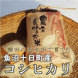 魚沼産コシヒカリ 棚田天水田米 10kg(5kg×2袋)令和1年産 精米直後発送|akagefarm