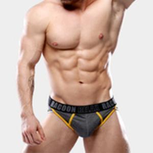 RACCON/アライグマ カッコイイ プレゼント メンズパンツ 男性インナー アンダーウェア ファッション ブリーフ下着 02|akahimensfashion