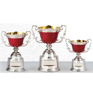 カラーカップ AC9507A :野球・空手・ゴルフ・サッカー・全ジャンルに優勝杯・優勝カップ|akai-tropfy