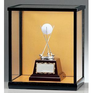 ホールインワン用ブロンズ BT2079(ガラスケース入り):ホールインワンの記念ボールを飾れる お祝い用の記念品 記念ブロンズトロフィー|akai-tropfy