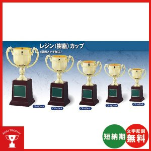 お買い得カップ CT1626D:野球・空手・ゴルフ・サッカー・全ジャンルに優勝杯・優勝カップ|akai-tropfy