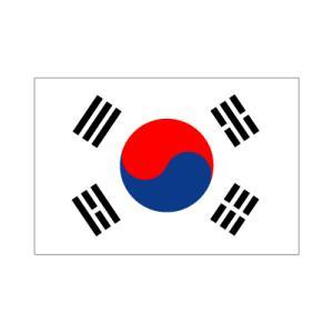 大韓民国国旗90×135cm|akai-tropfy