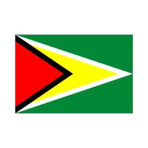 ガイアナ卓上旗|akai-tropfy