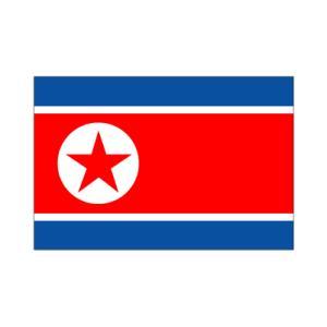 北朝鮮卓上旗|akai-tropfy