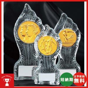 レリーフ交換式クリスタル楯 VSX3617C:社内表彰・企業表彰・周年記念・コンテスト用に高級感あるガラス製楯・クリスタル楯|akai-tropfy