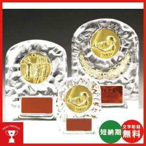 レリーフ交換式クリスタル楯 VSX5501D:社内表彰・企業表彰・周年記念・コンテスト用に高級感あるガラス製楯・クリスタル楯|akai-tropfy
