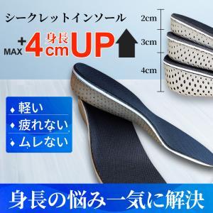 シークレットインソール 3cm 2cm 1cm メンズ レディース 中敷き 衝撃吸収 疲れない 低反発 かかと|akane-store