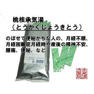 桃核承気湯トウカクジョウキトウ エキス細粒47 2.0g×3...