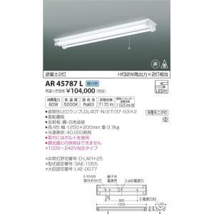 AR45787L 非常灯  LED(昼白色) コイズミ照明 (KA) 照明器具|akariyasan