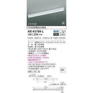 AR45789L 非常灯  LED(昼白色) コイズミ照明 (KA) 照明器具|akariyasan