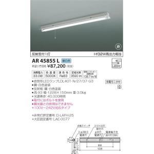 AR45855L 非常灯  LED(昼白色) コイズミ照明 (KA) 照明器具|akariyasan
