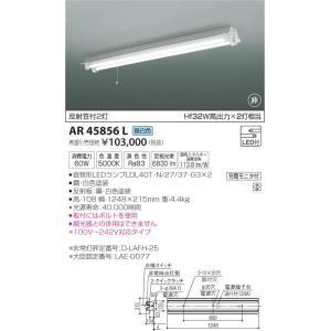 AR45856L 非常灯  LED(昼白色) コイズミ照明 (KA) 照明器具|akariyasan
