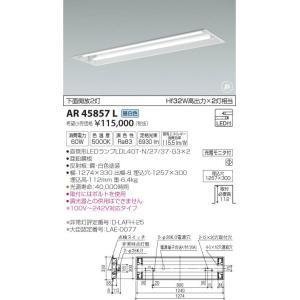 AR45857L 非常灯  LED(昼白色) コイズミ照明 (KA) 照明器具|akariyasan